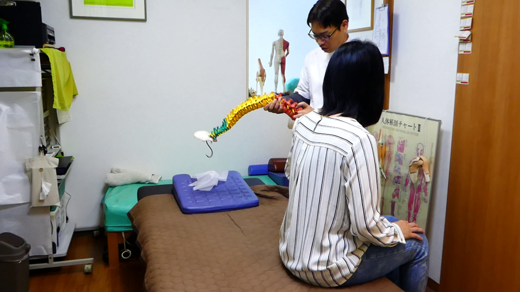 腰椎椎間板ヘルニアや脊柱管狭窄症の説明脊柱模型