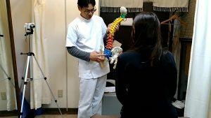 脊柱模型で腰痛を説明