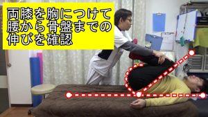 両膝を胸につけて腰から骨盤までの筋肉の伸長を確認テスト検査