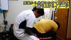 膝裏から坐骨にかけて筋膜を撫で上げるイメージ動体療法ギックリ腰