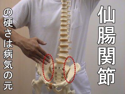 仙腸関節の硬さは病気の元