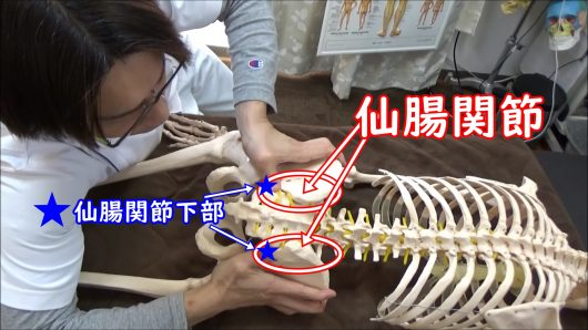 仙腸関節下部の圧迫
