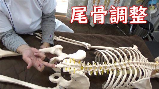 尾骨下部調整