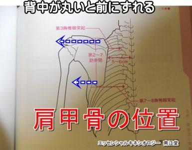 肩甲骨の外側のズレ