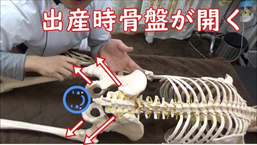 出産で骨盤が開く