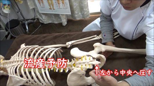 流産予防尾骨調整左から中央へ圧す