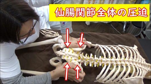 骨盤調整仙腸関節全体の圧迫