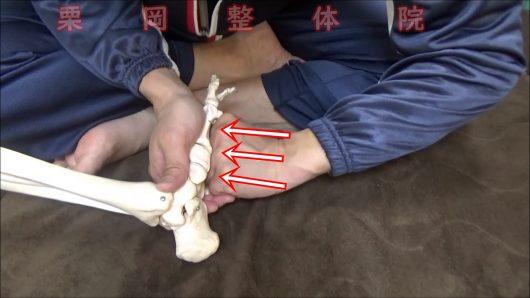 足の甲の調整押す