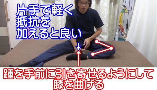 踵を手前に引き寄せるようにして膝を曲げる内側ハムストリングスの筋トレ